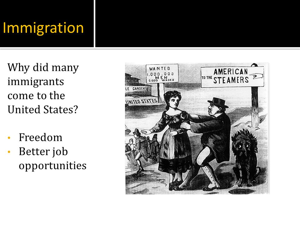 Immigration Why did many immigrants come to the United States Freedom
