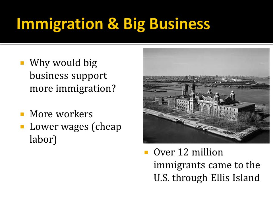 Immigration & Big Business