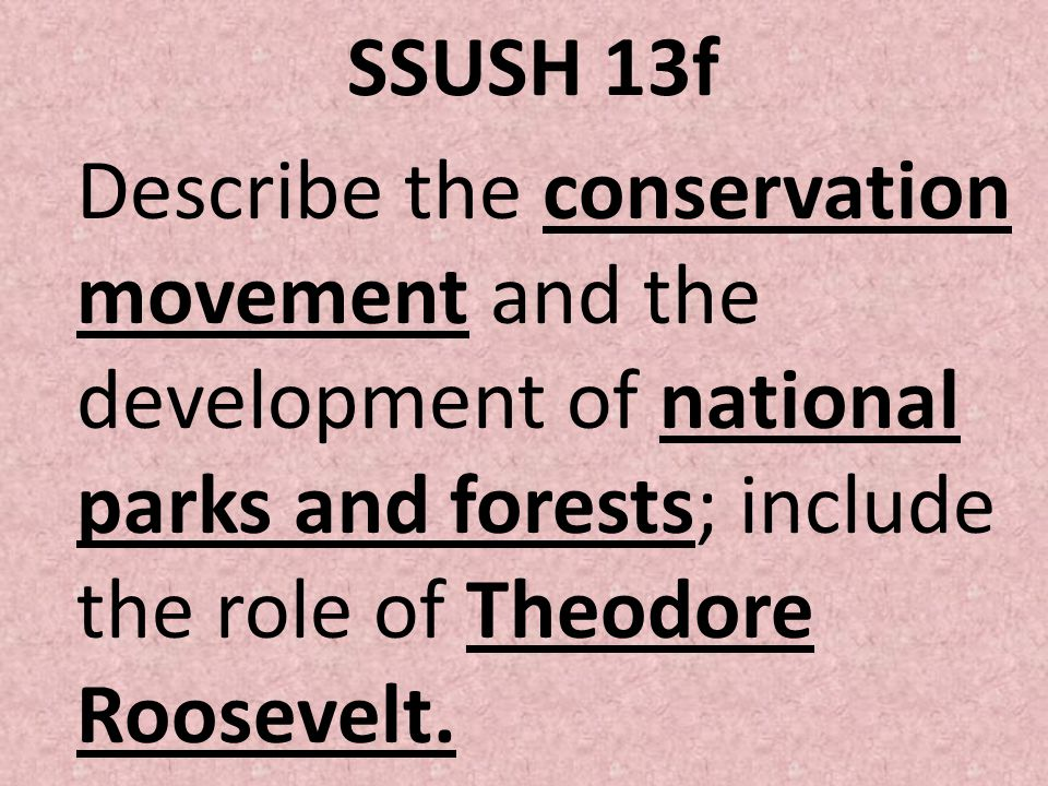SSUSH 13f Describe the conservation movement and the development of national parks and forests; include the role of Theodore Roosevelt.