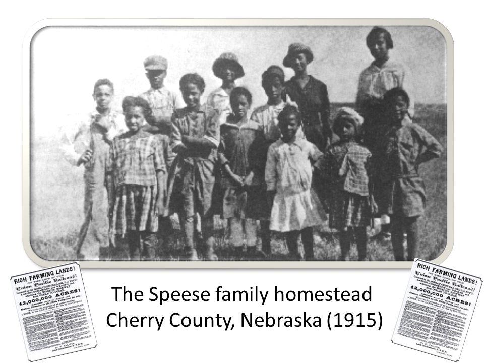 The Speese family homestead Cherry County, Nebraska (1915)