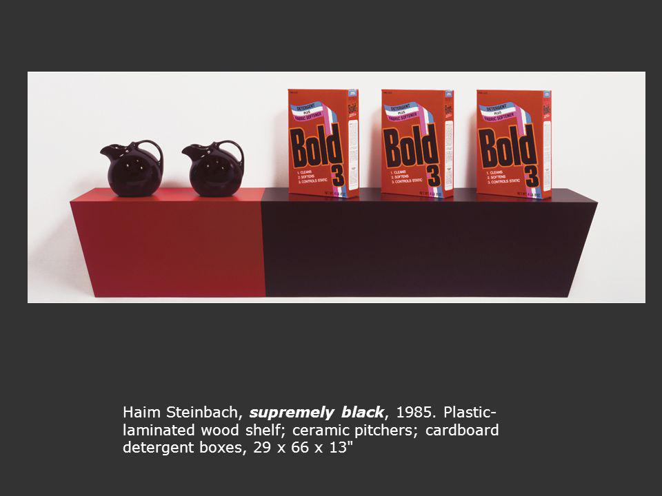 Haim Steinbach, supremely black, 1985