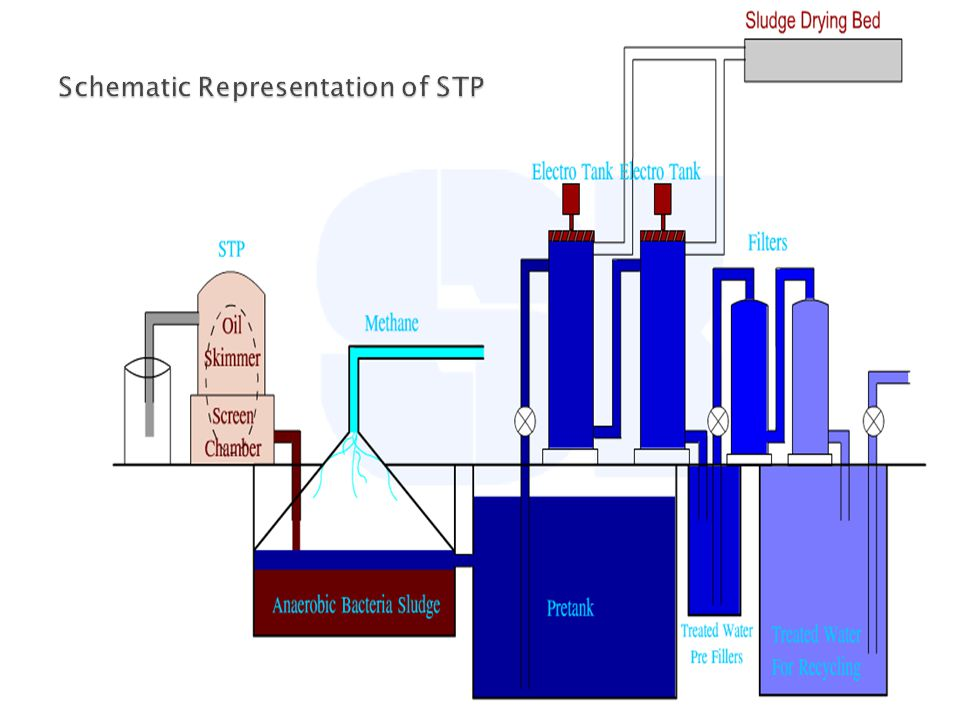 Schematic Representation of STP