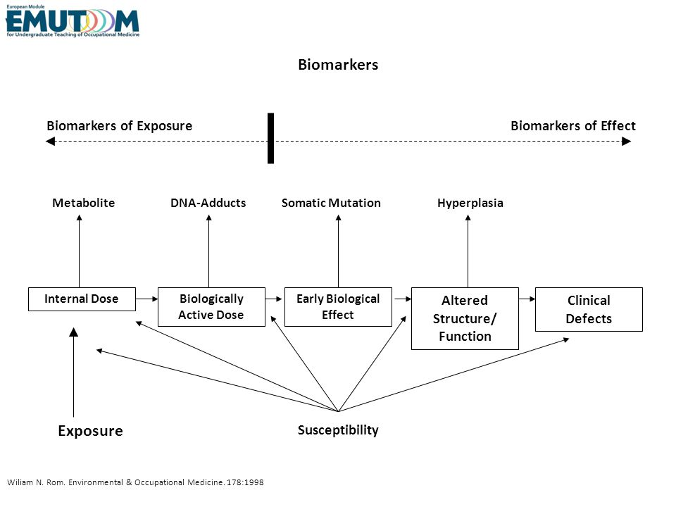 Biomarkers Exposure Biomarkers of Exposure Biomarkers of Effect