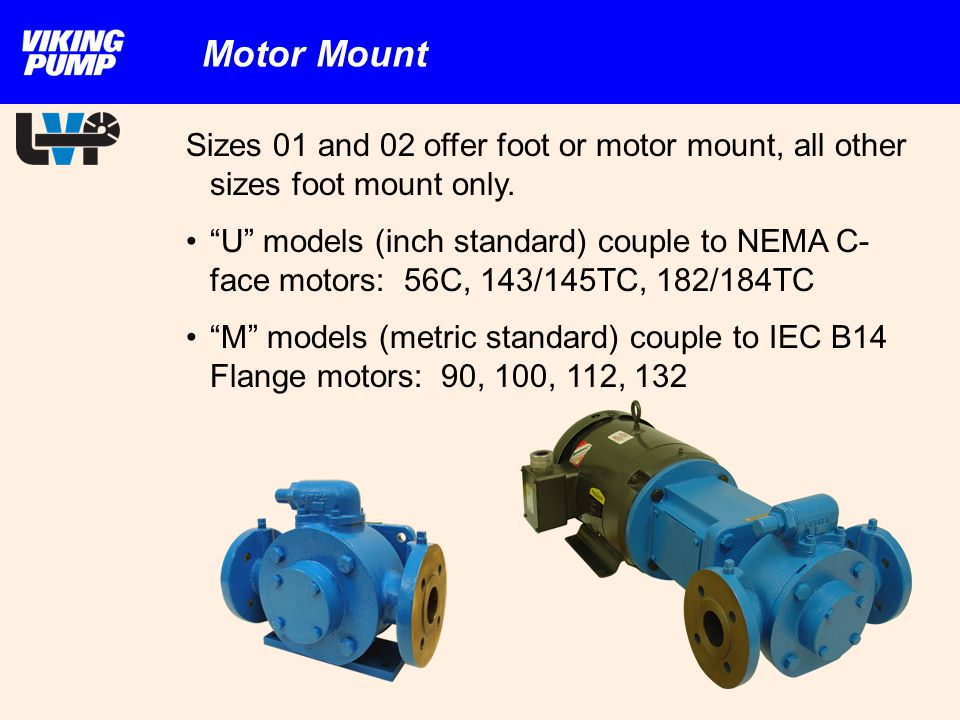 Motor Mount Sizes 01 and 02 offer foot or motor mount, all other sizes foot mount only.