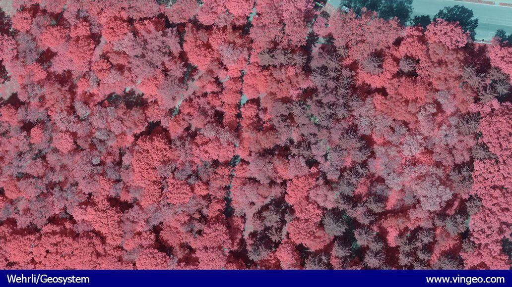 Wehrli/Geosystem www.vingeo.com