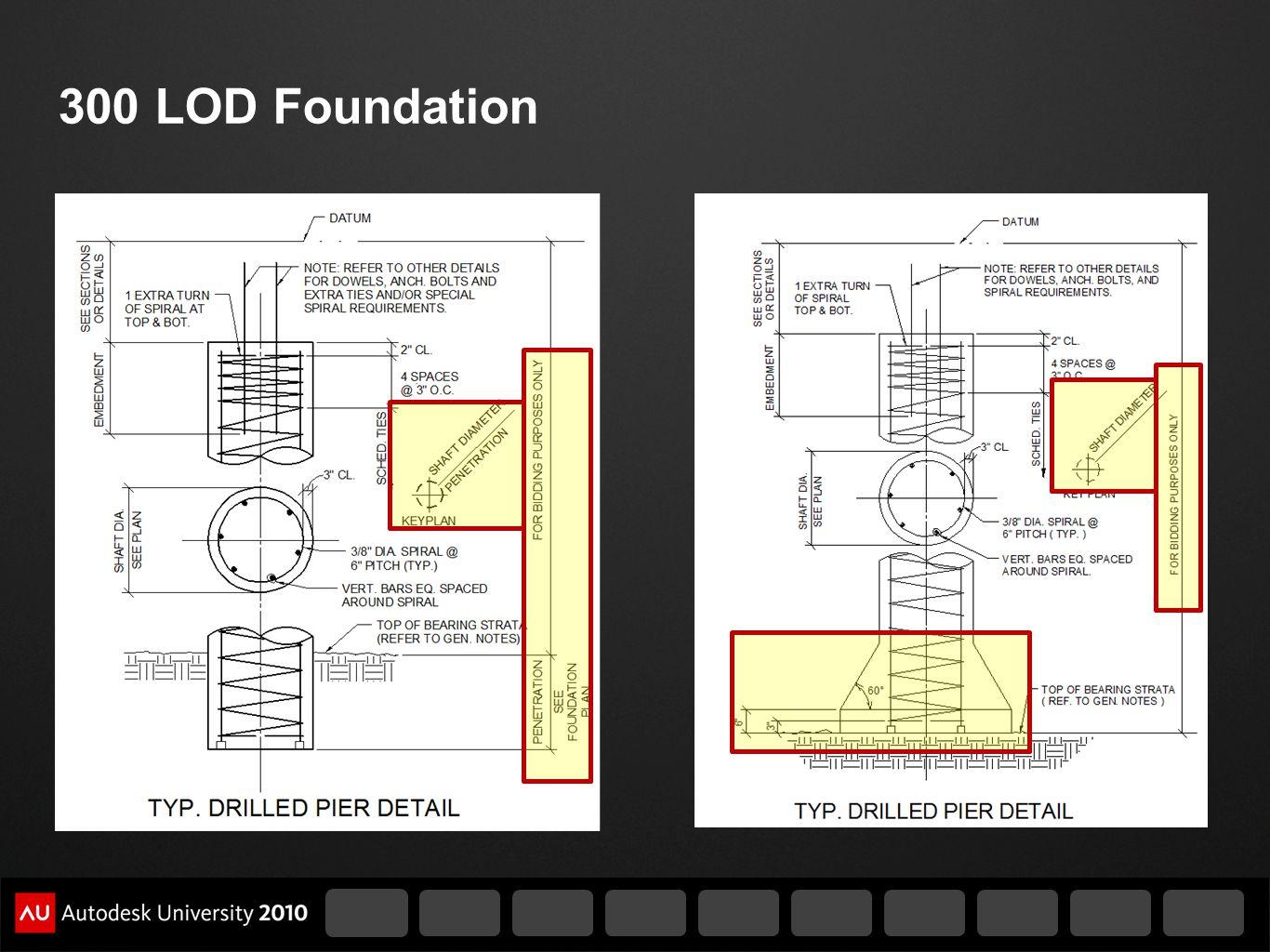 300 LOD Foundation