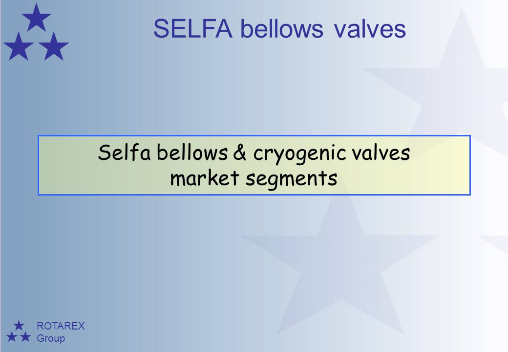 Selfa bellows & cryogenic valves market segments