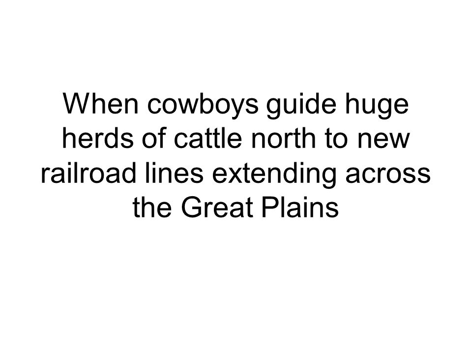 When cowboys guide huge herds of cattle north to new railroad lines extending across the Great Plains