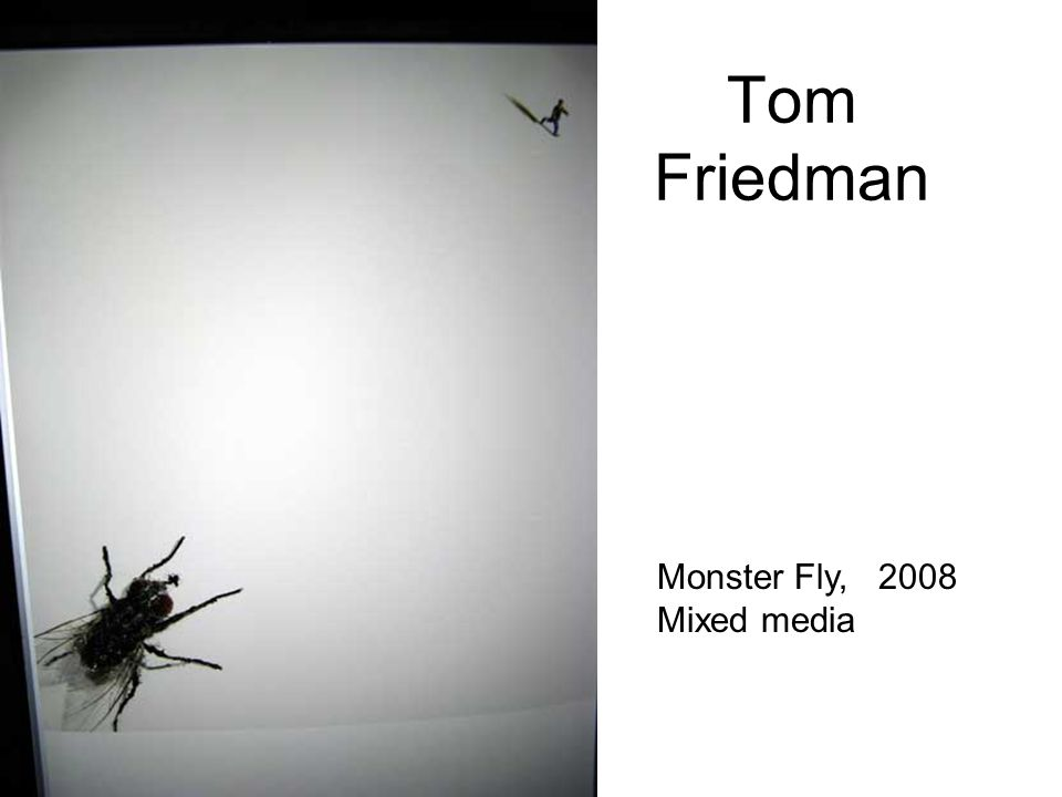 Tom Friedman Monster Fly, 2008 Mixed media