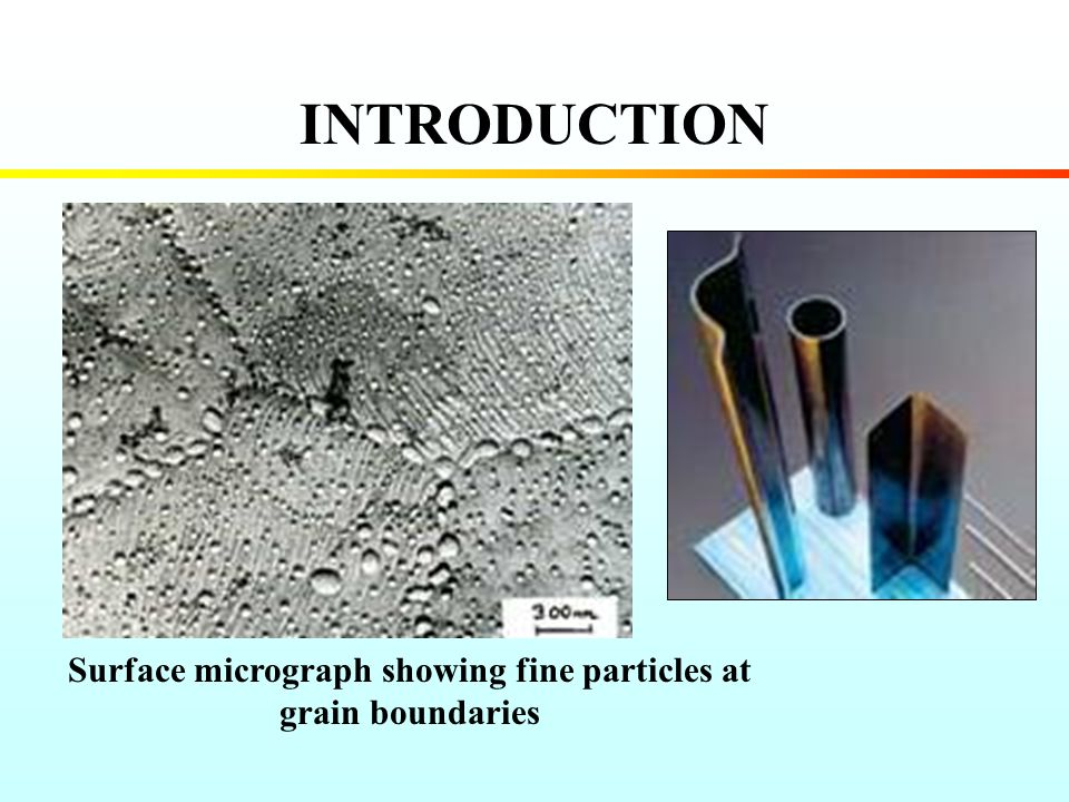 Surface micrograph showing fine particles at grain boundaries