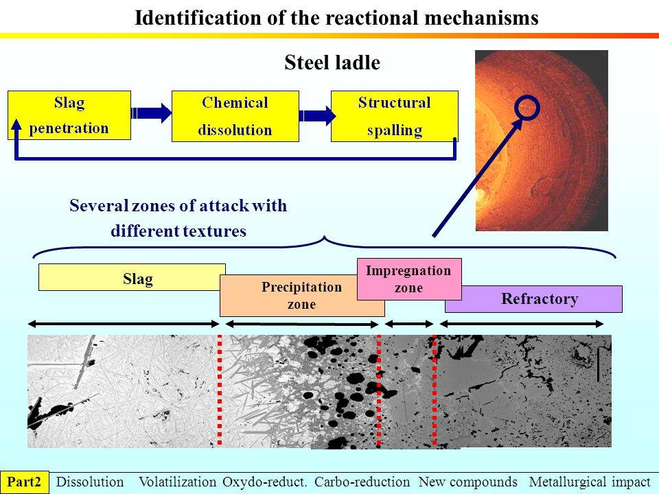 Identification of the reactional mechanisms