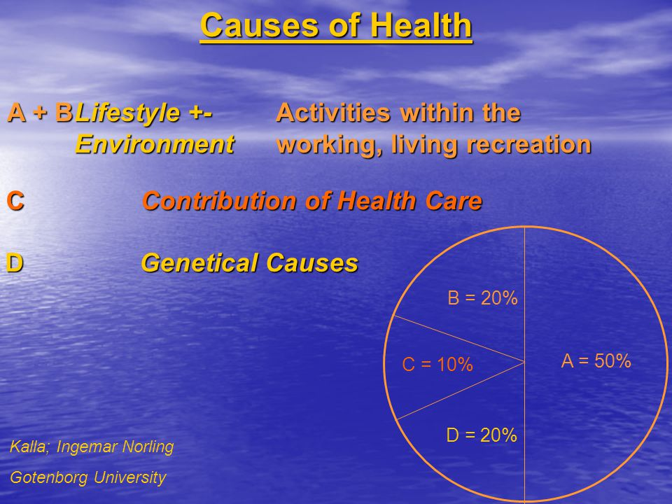 Causes of Health A + B Lifestyle +- Activities within the Environment working, living recreation.