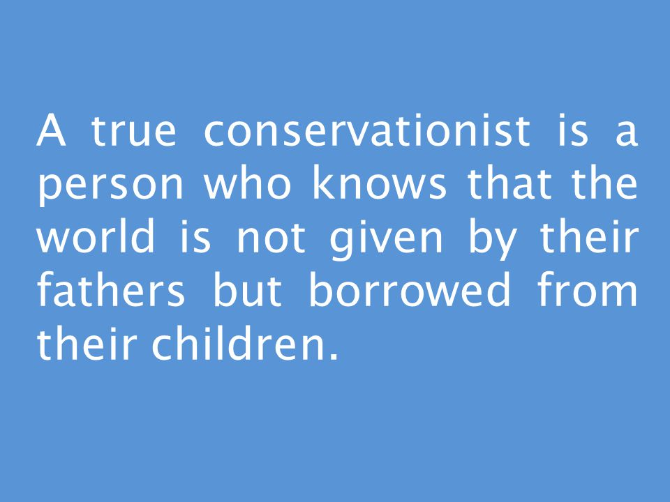 A true conservationist is a person who knows that the world is not given by their fathers but borrowed from their children.