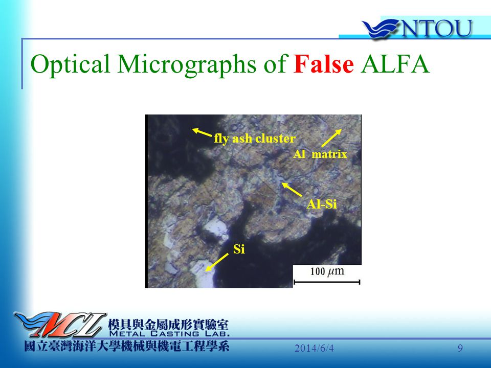 Optical Micrographs of False ALFA