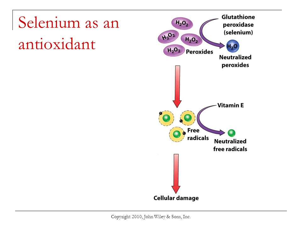 Selenium as an antioxidant
