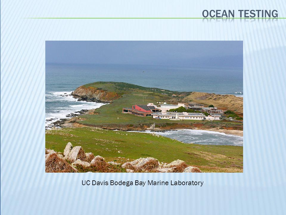 Ocean testing UC Davis Bodega Bay Marine Laboratory