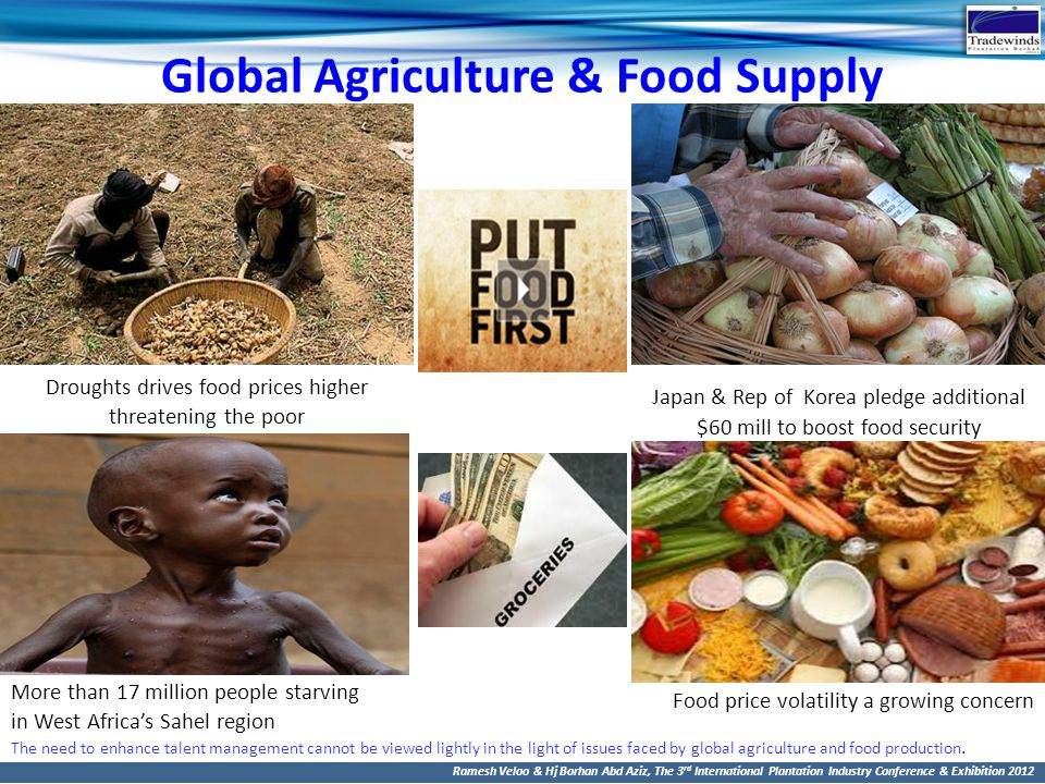 Global Agriculture & Food Supply