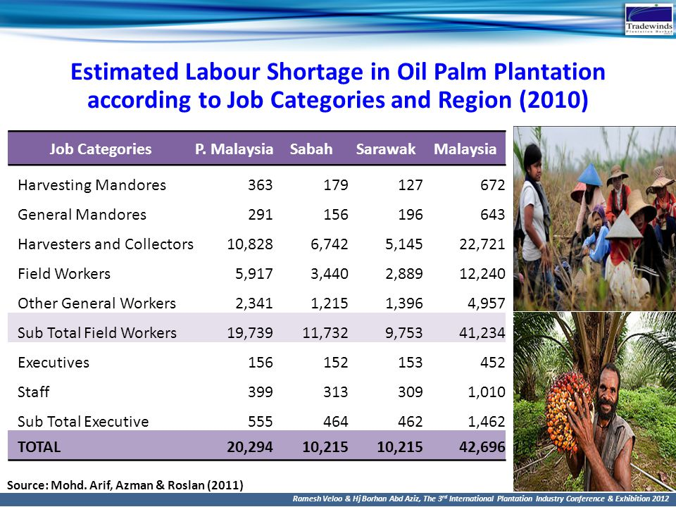 Estimated Labour Shortage in Oil Palm Plantation according to Job Categories and Region (2010)
