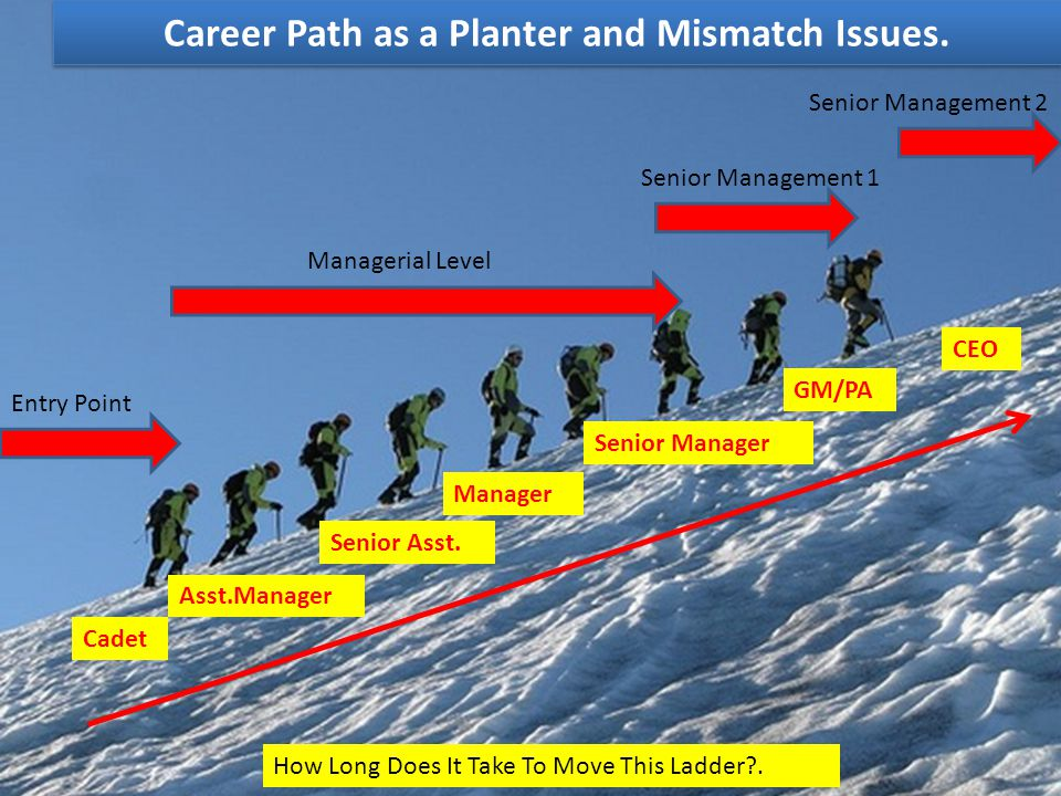 Career Path as a Planter and Mismatch Issues.