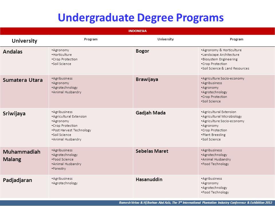 Undergraduate Degree Programs
