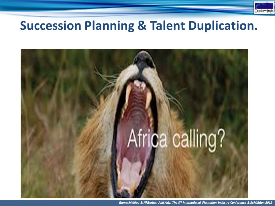 Succession Planning & Talent Duplication.