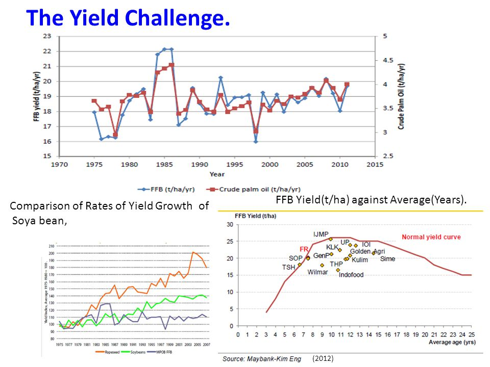 The Yield Challenge. FFB Yield(t/ha) against Average(Years).