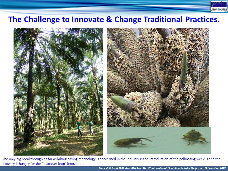 The Challenge to Innovate & Change Traditional Practices.