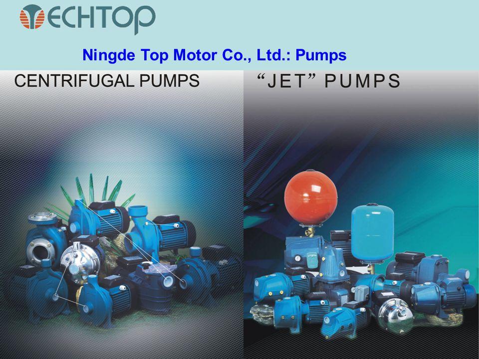 Ningde Top Motor Co., Ltd.: Pumps