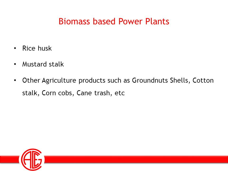 Biomass based Power Plants