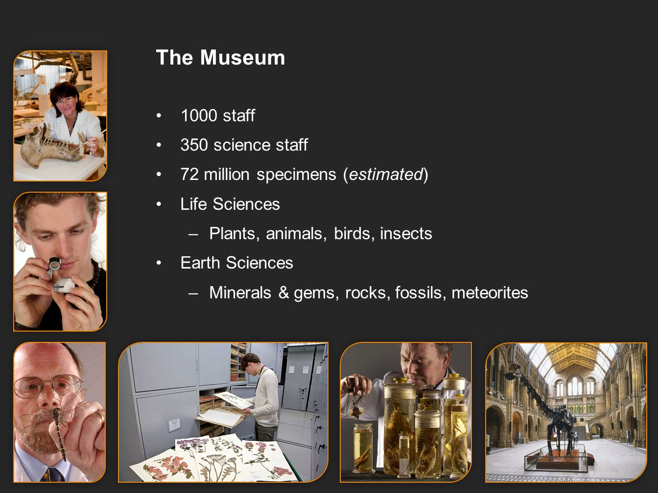 The Museum 1000 staff 350 science staff