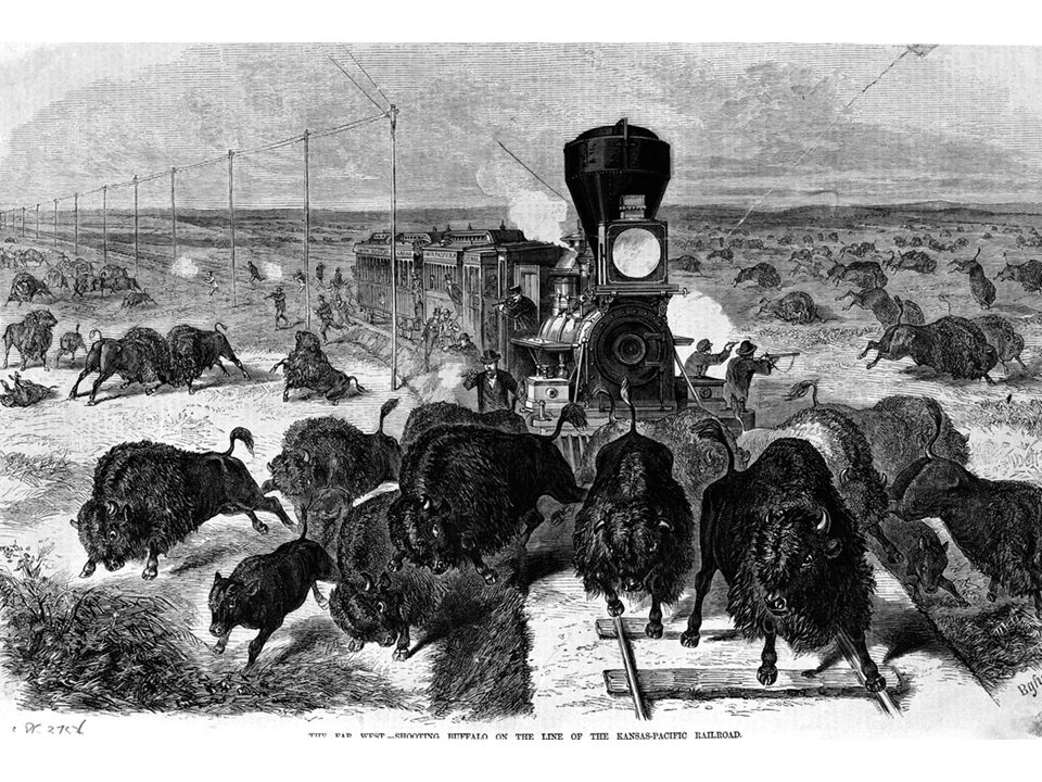 fig16_15.jpg Page 608: Hunters shooting buffalo as the Kansas-Pacific Railroad cuts across the West, 1870s.