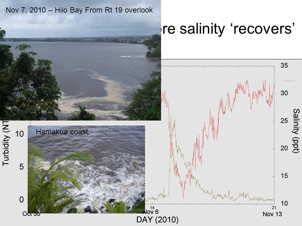 Turbidity subsides before salinity 'recovers'