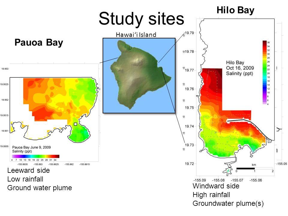 Study sites Hilo Bay Pauoa Bay Hilo Bay (E. Hawaii) Pauoa Bay