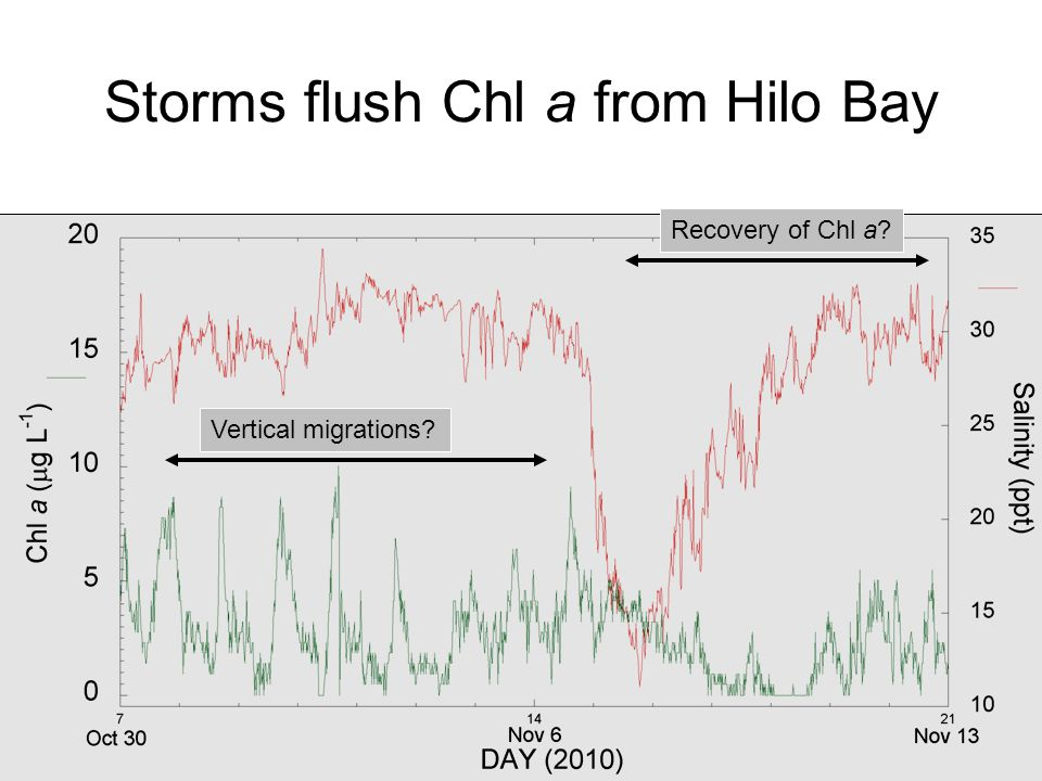 Storms flush Chl a from Hilo Bay