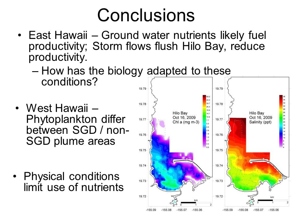 Conclusions East Hawaii – Ground water nutrients likely fuel productivity; Storm flows flush Hilo Bay, reduce productivity.