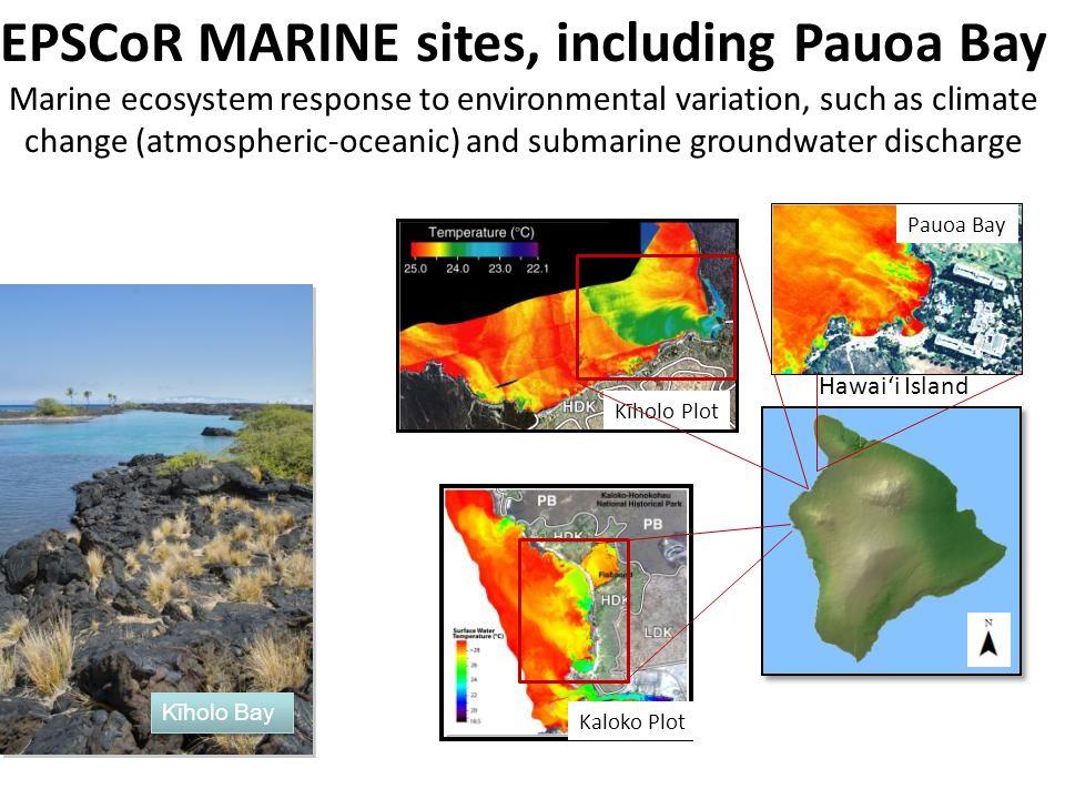 EPSCoR MARINE sites, including Pauoa Bay