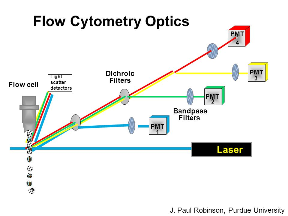 Flow Cytometry Optics Laser Dichroic Filters Flow cell Bandpass