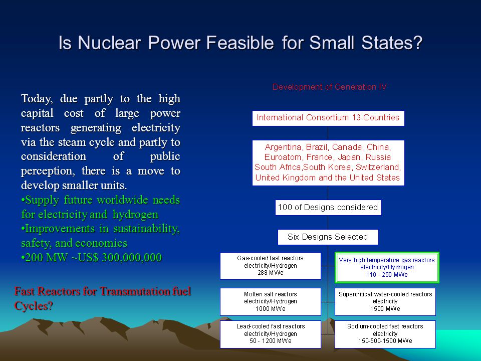 Is Nuclear Power Feasible for Small States