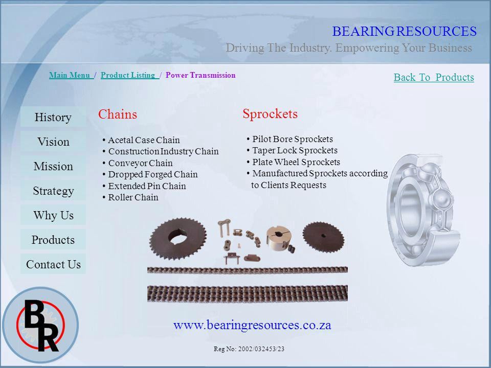 BEARING RESOURCES Chains Sprockets www.bearingresources.co.za