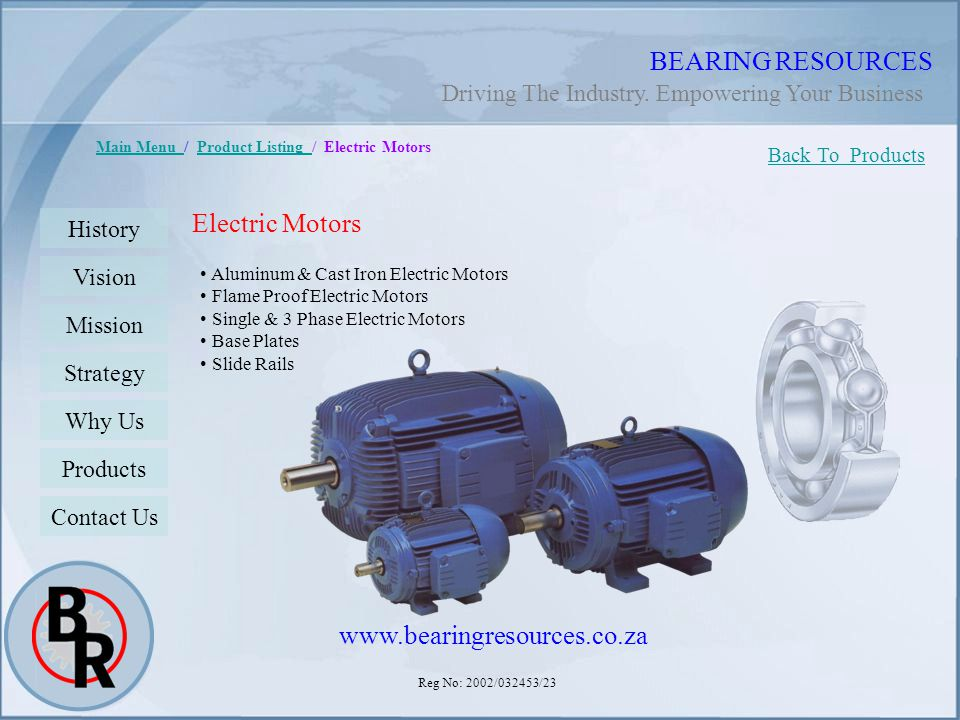 BEARING RESOURCES Electric Motors www.bearingresources.co.za