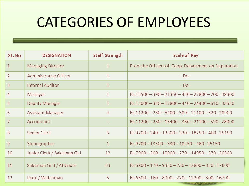 CATEGORIES OF EMPLOYEES