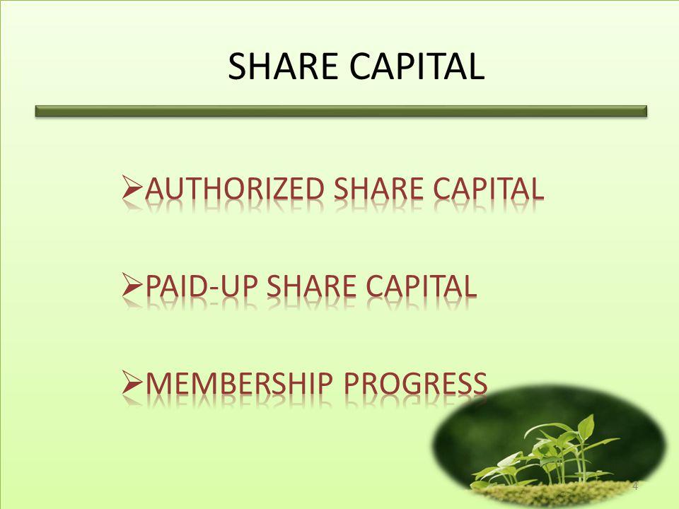 SHARE CAPITAL Authorized share capital Paid-up share capital