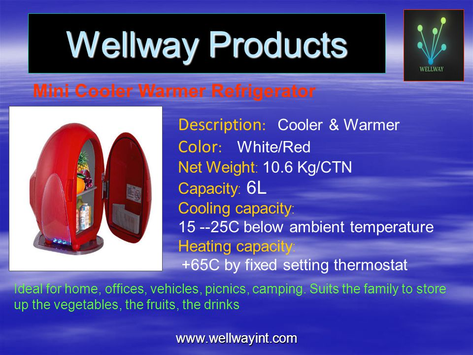Wellway Products Mini Cooler Warmer Refrigerator