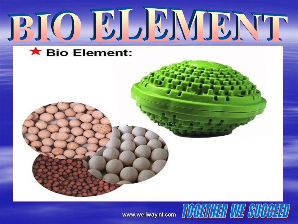 BIO ELEMENT www.wellwayint.com TOGETHER WE SUCCEED