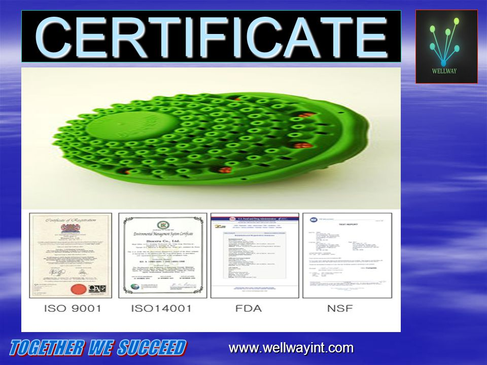 CERTIFICATE CERTIFICATE www.wellwayint.com TOGETHER WE SUCCEED