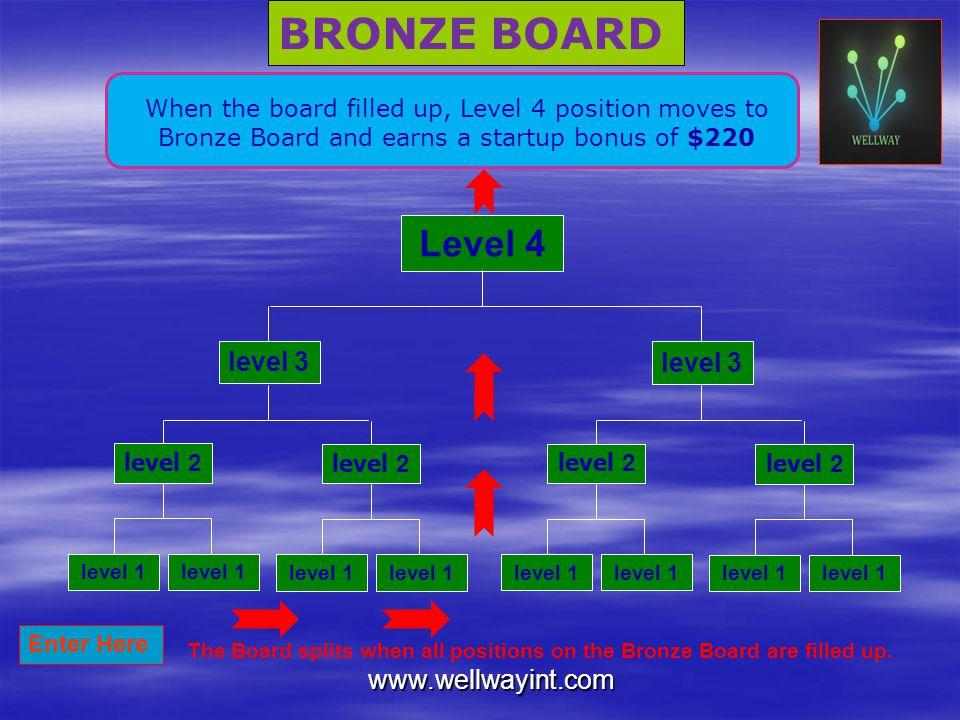BRONZE BOARD Level 4 level 3 level 3 www.wellwayint.com