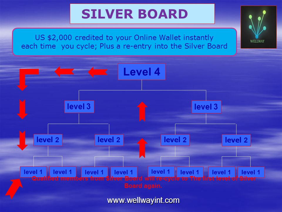 SILVER BOARD Level 4 level 3 level 3 www.wellwayint.com