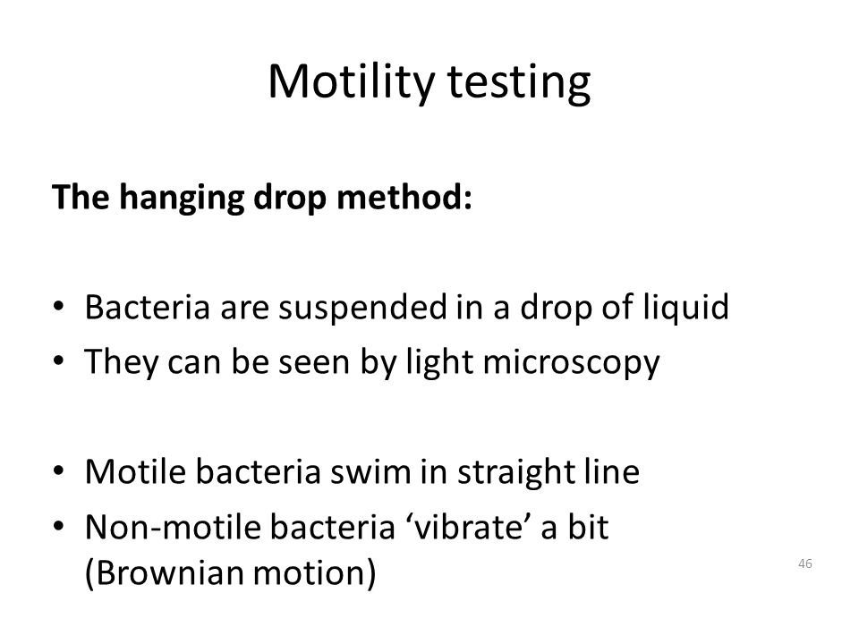 Motility testing The hanging drop method: