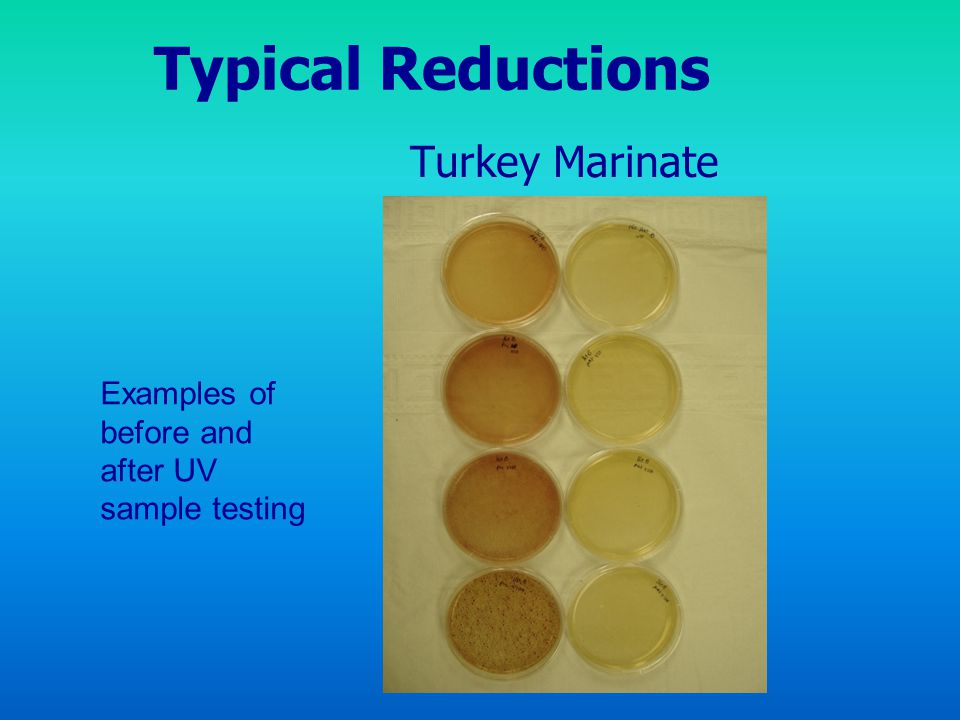 Typical Reductions Turkey Marinate