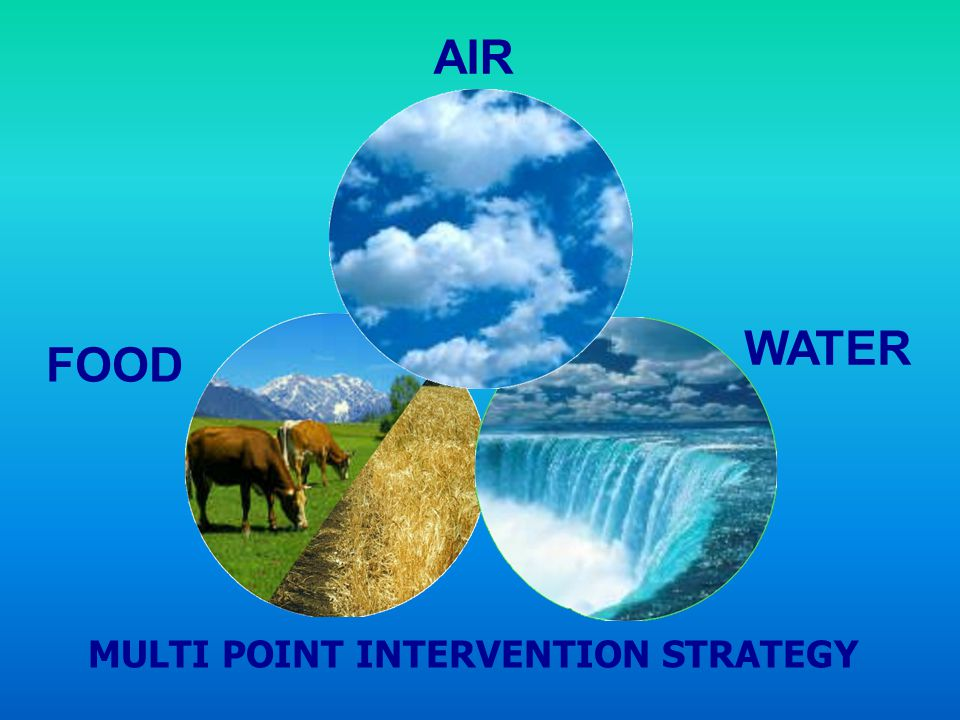 AIR WATER FOOD MULTI POINT INTERVENTION STRATEGY